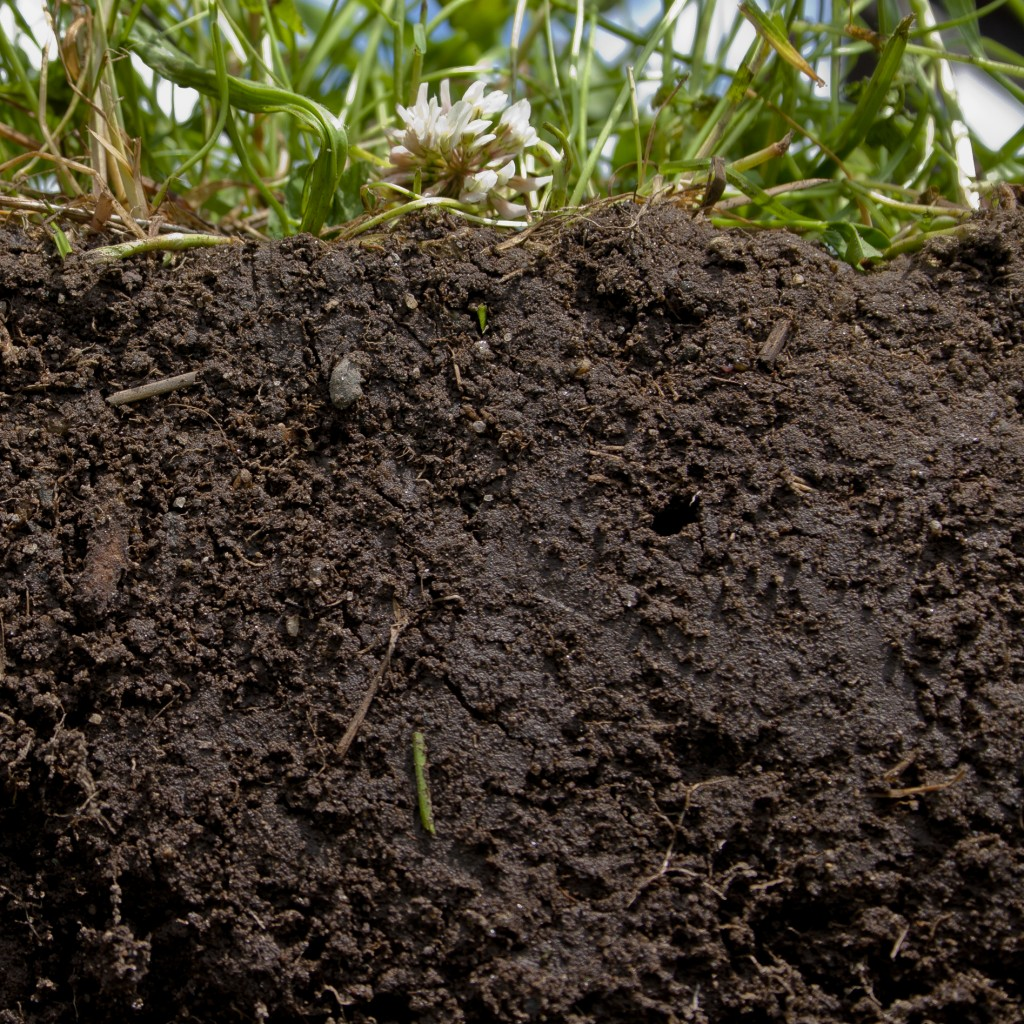 How to create amazing garden soil from clay silt or sand for Garden topsoil