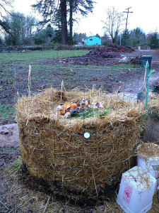 compost wire cage