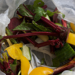 vegetable-scraps